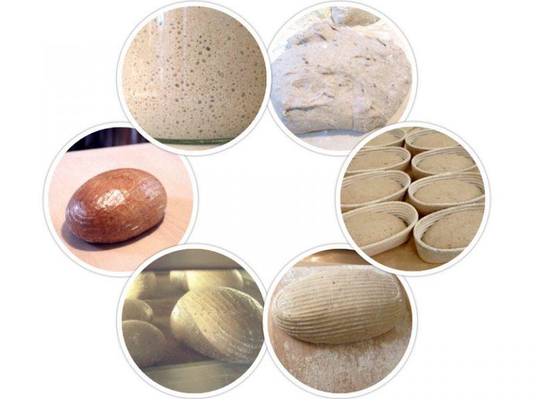 Od kvasu k upečenému chlebu - v smere hodinových ručičiek: kvas, vymiesenie cesta, kysnutie v ošítkach, sádzanie, pečenie, hotový chlebík